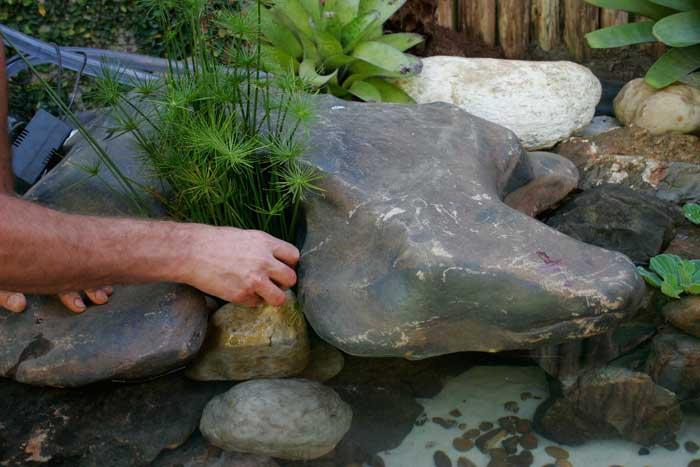 Pedras com plantas na montagem de um lago ornamental passo a passo
