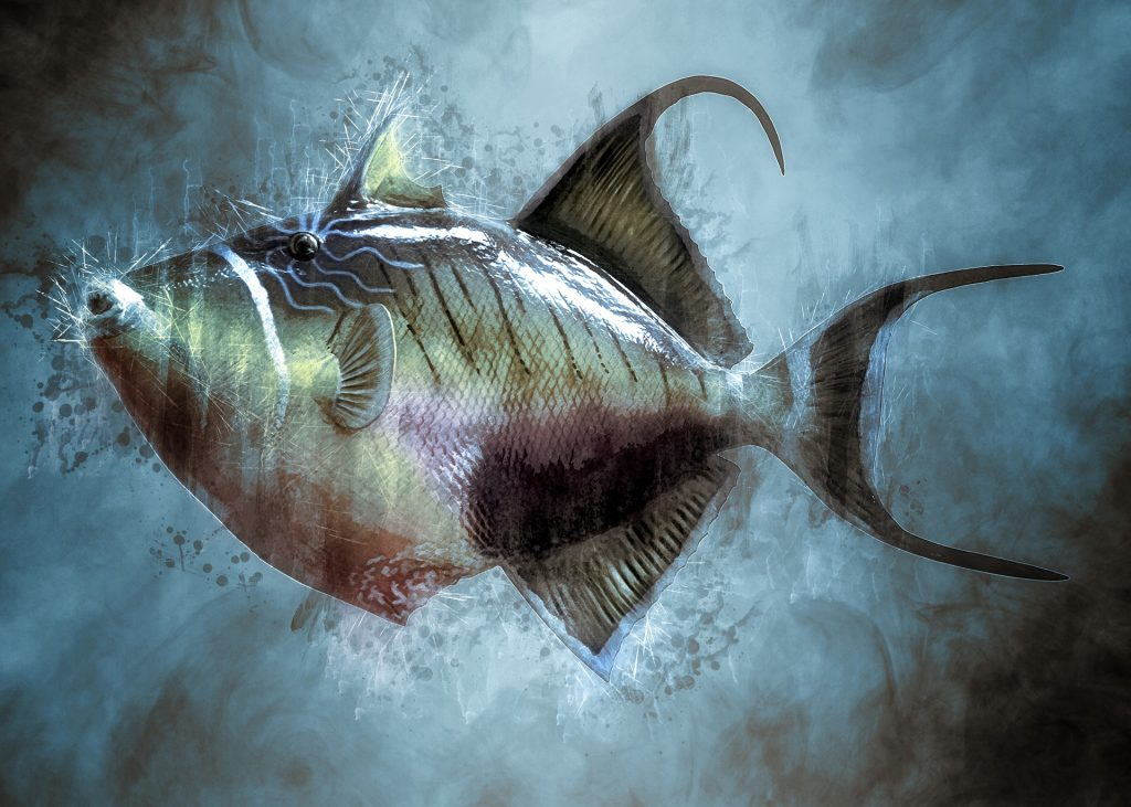 ozônio em aquários marinhos
