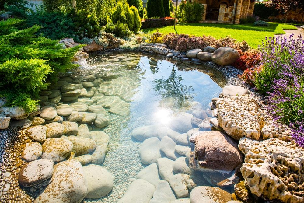 lagos orgânicos