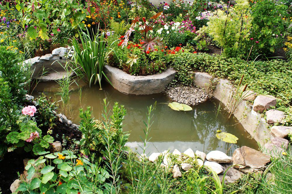 lago ornamental turvo